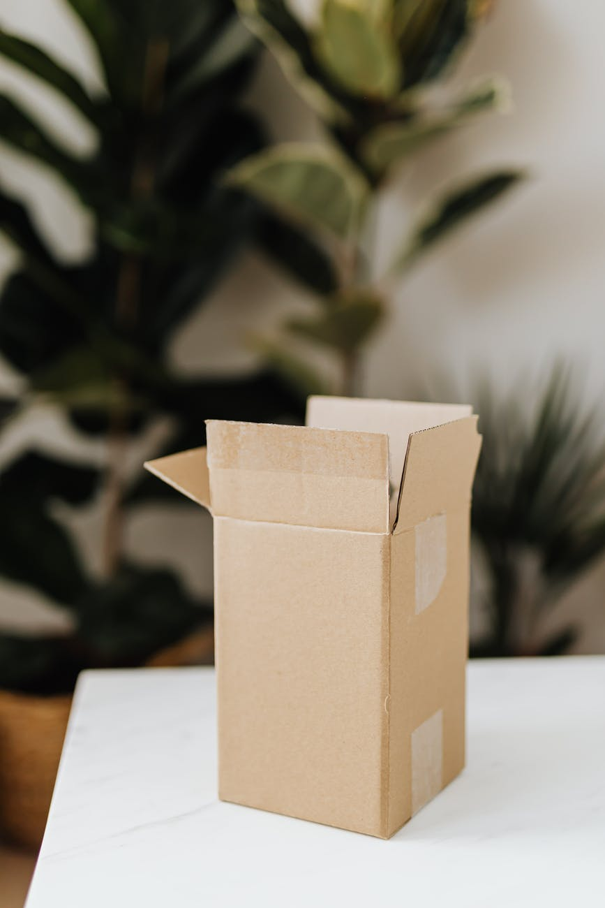 cardboard box on table in room with plants