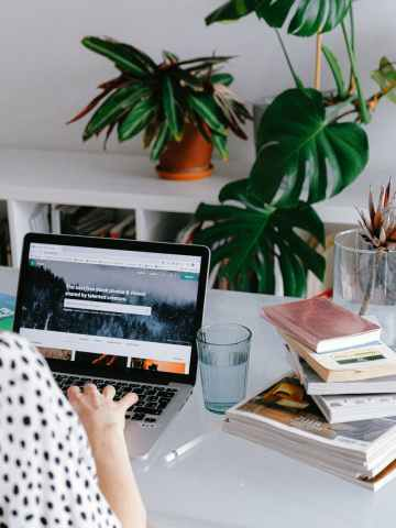 best sustainable and ethical blogs